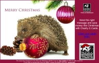Christmas card for HMWT charity